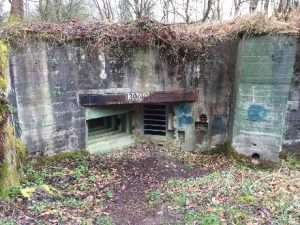 westwall guided tours, siegfried line tours, dragons teeth, hurtgen forest tours, aachen tours, roetgen, der buhlert, german bunkers, oberotterbach