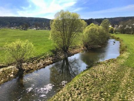 tuttlingen tours, donau, honberg, lake constance, baden wurttemberg tours, neckar river