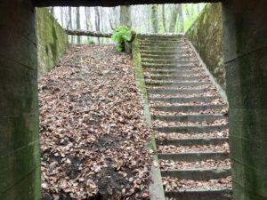 siegfried line tours saarbrucken, westwall bunkers, westwall tours, skyline drive tours, bettendorf, saar tours, hoesdorf tours, diekirch ww2 tours