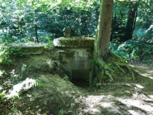 westwall guided tours, siegfried line private tours, siegfried line bunkers, dragons teeth, rheinland pfalz tours, things to do steinfeld, things to do oberotterbach, things to do bad bergzabern, dorrenbach, pirmasens, one man bunker schaidt, ww2 guided tours germany