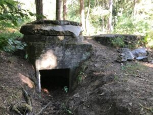 westwall guided tours, siegfried line guided tours, german bunkers rheinland pfalz, schaidt, steinfeld, oberotterbach, niederroterbach, bad bergzabern ww2, ww2 private tours, ww2 tours rheinland pfalz, bad bergzabern museum, dragons teeth tours, hockerlinie, karlsruhe bunkers, one man bunker,
