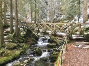 black forest tours, schwarzwald guided tours, things to do black forest, historical tours black forest, triberg, titisee, ww2 guided tours germany